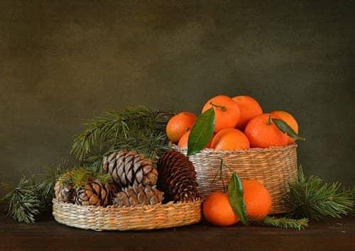 Немного о натюрмортах, еловые ветки и мандарины